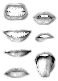 Mouth study